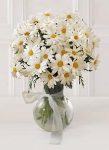 Fleuriste longueuil livraison de fleurs longueuil ftd for Envoie de fleurs en ligne